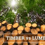 Q&A: Timber vs lumber