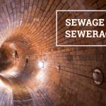 Q&A: Sewage vs sewerage